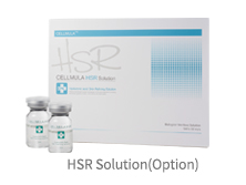 HSR Solution(Option)